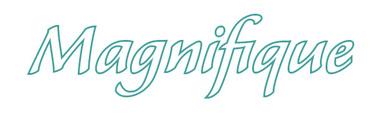 Magnifique_title_1.jpg